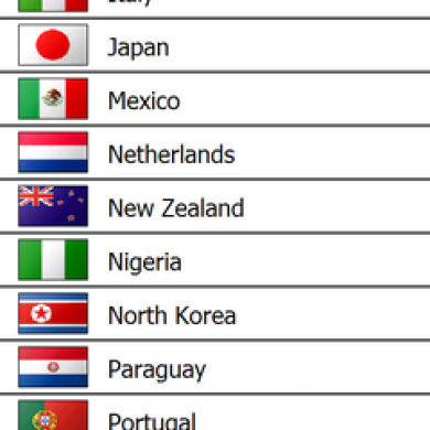 World Cup Pocket 2010 Updated