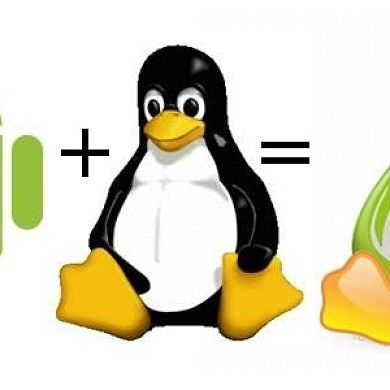 Android 5.0 to Feature Linux Kernel 3.14? Totally Possible!