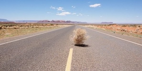 Image result for tumbleweed in ghost town