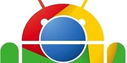 "Google Says ""No Plan to Phase Out Chrome OS"""