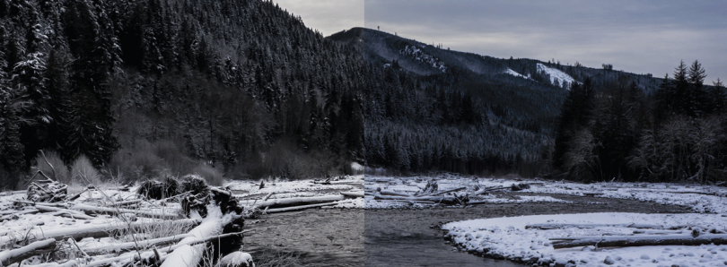 RAW Smartphone Photography: A Look at The Difference RAW Editing Makes (Ft. OnePlus 3T)