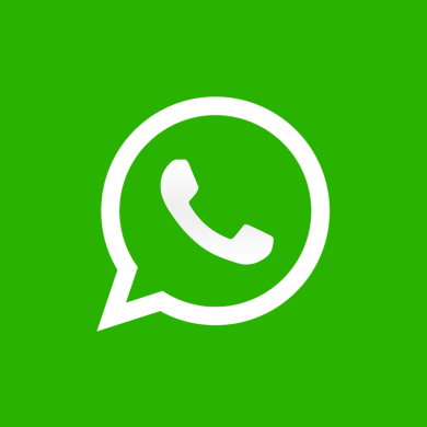Steg Enables You to Send Unsupported Files Through WhatsApp