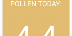 Check the Pollen Count for U.S. Cities with a New App Called Pollen