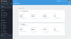 Firebase Console Overview After