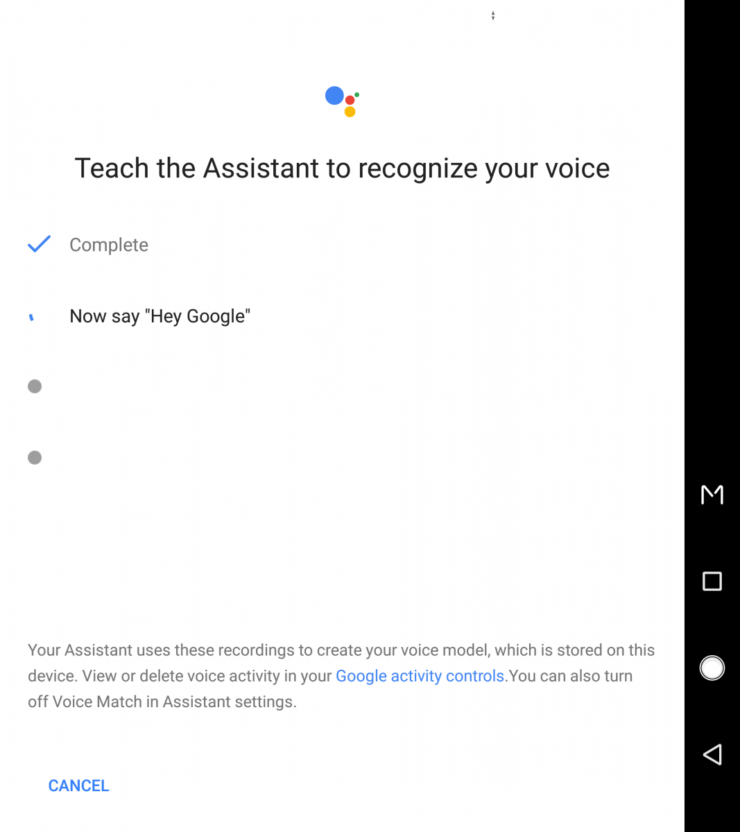 Hey Google Voice Command Google Assistant