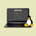 Here's a list of Chromebooks with Linux app support